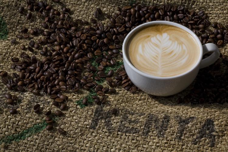 Image 1 - Kenya International Coffee Day (Cropped).jpg