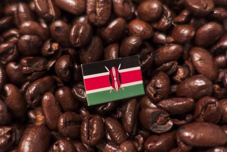 Image 2 - Kenya International Coffee Day (Cropped.jpg