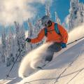 winter ski holiday thumbnail.png