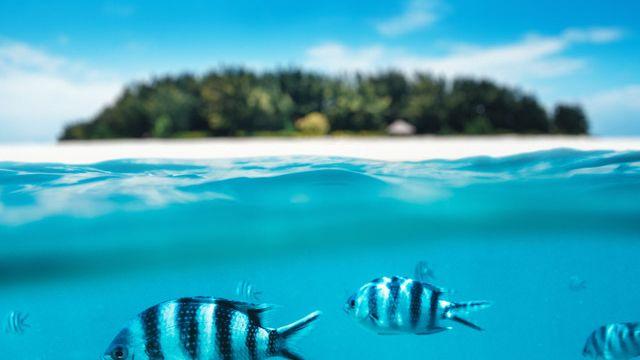 private-travel_destinations_indian-ocean_thumbnail.jpg